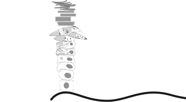 logo_kerato